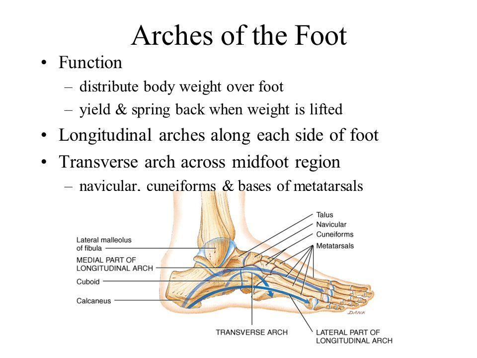 foot-foolishness